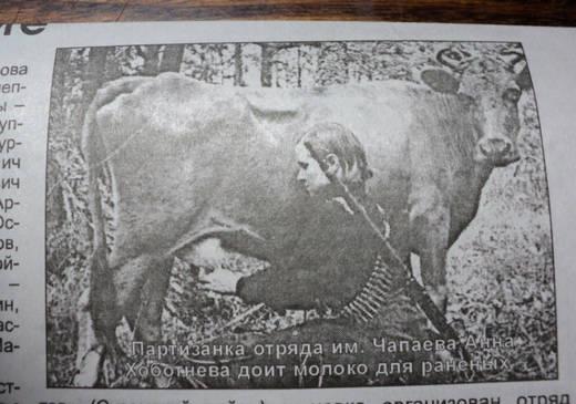 Партизанка доит молоко
